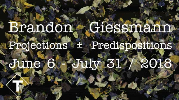TRUCK Gallery present Projections ± Predispositions